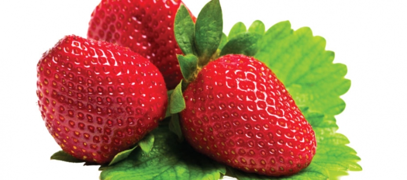 Unique smell of strawberries, and the taste, mmm… Enjoy it all year round, in every way you please.